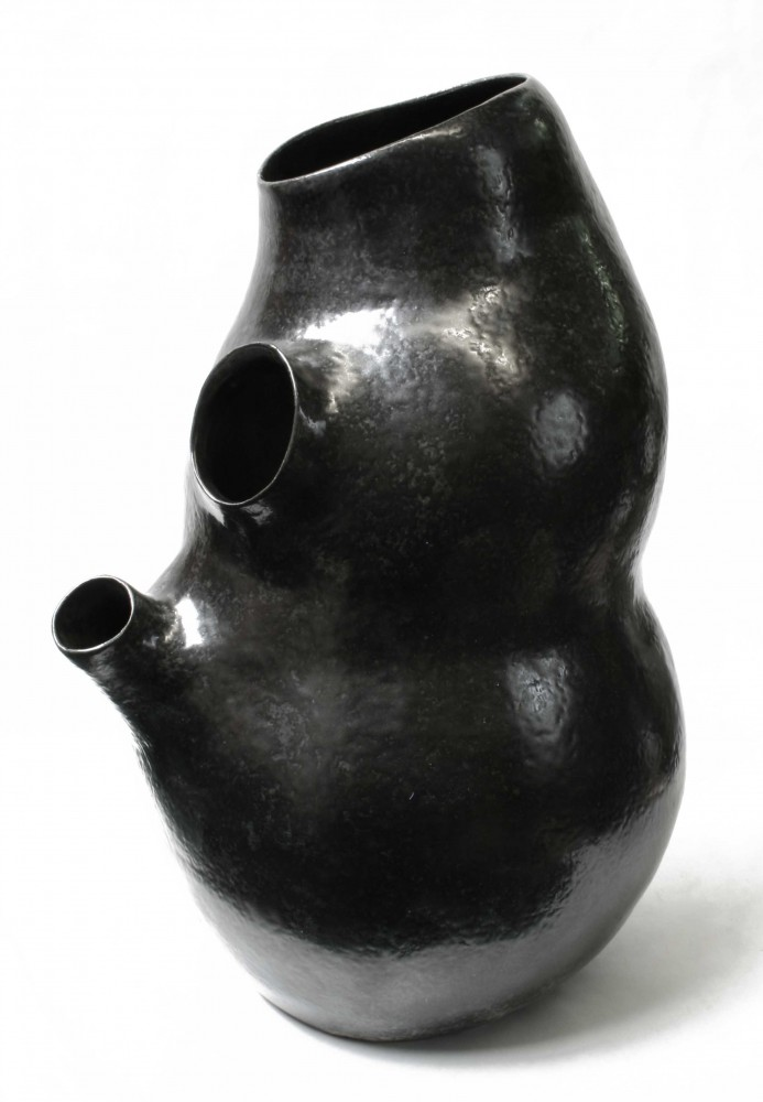 black-kidney-2